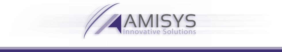 AMISYS | Innovative Solutions